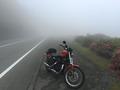 霧のターンパイク